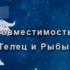 telets-i-ryba